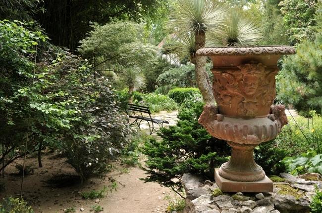 jardins Agapanthe 3.jpg