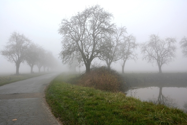 574392brouillard1.jpg