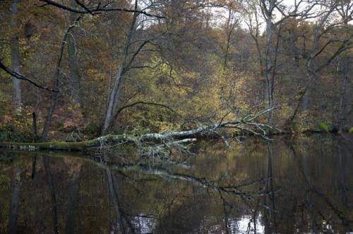 yvelines,étang des vallées,photos
