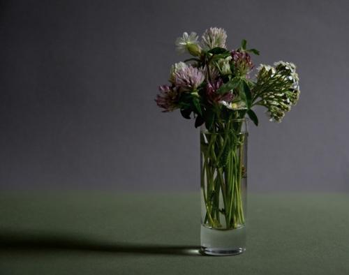 Quelques fleurs.jpg